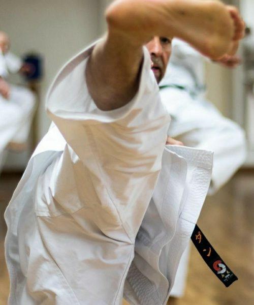 Shotokan Karate Voksen – Let øvede/øvede 19/20