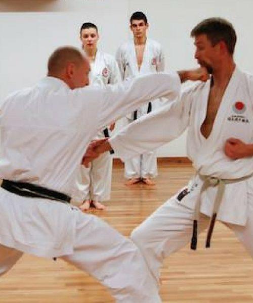 Shotokan Karate Ung – Let øvede/øvede (14-17 år) 19/20
