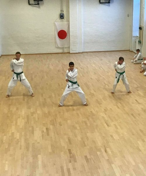Shotokan Karate Barn – Let øvet/øvet (+7 år) 18/19