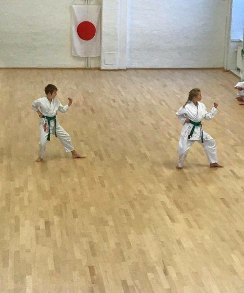 Shotokan Karate Barn Begyndere/let øvede (7-12 år) 19/20