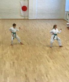 Shotokan Karate Barn – Begyndere/let øvede (7-12 år) 21/22