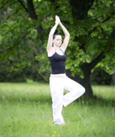 Yoga Vinyasa Slow Flow Voksen 2021