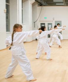 Shotokan Karate Ung – Let øvede/øvede (14-17 år) 21(22